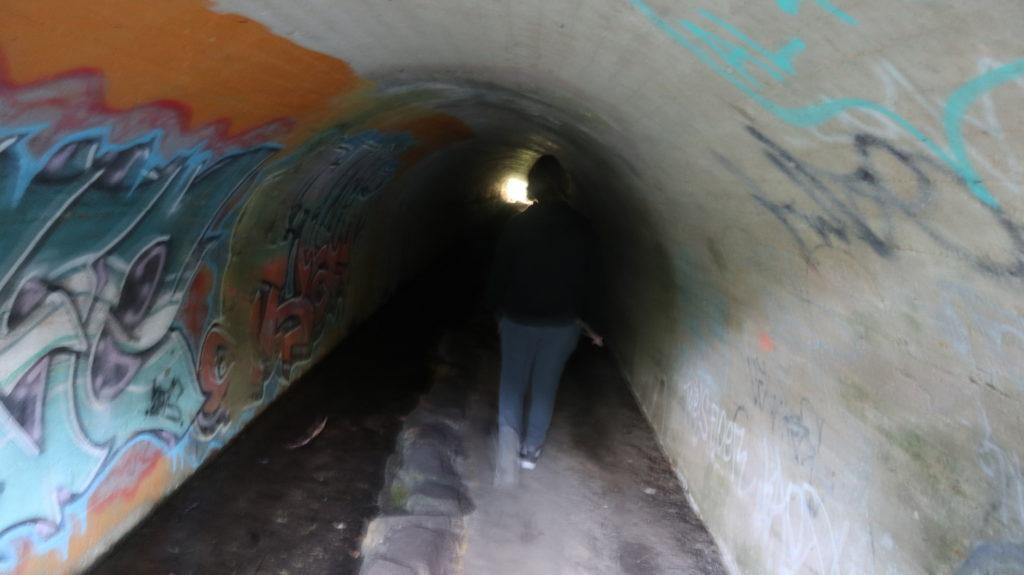 Belair Nationalpark: Kleiner Tunnel
