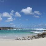 Kangaroo Island - Teil 1