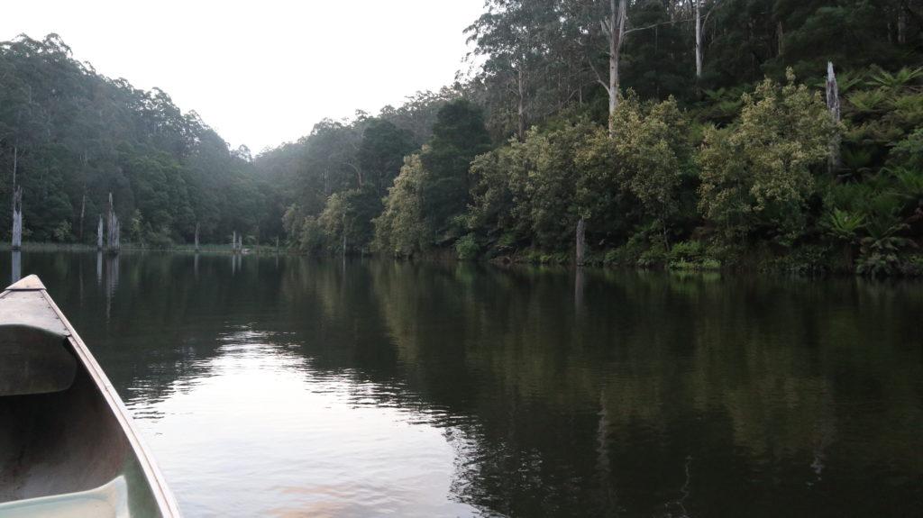 Schwimmen mit Schnabeltieren Boot und See