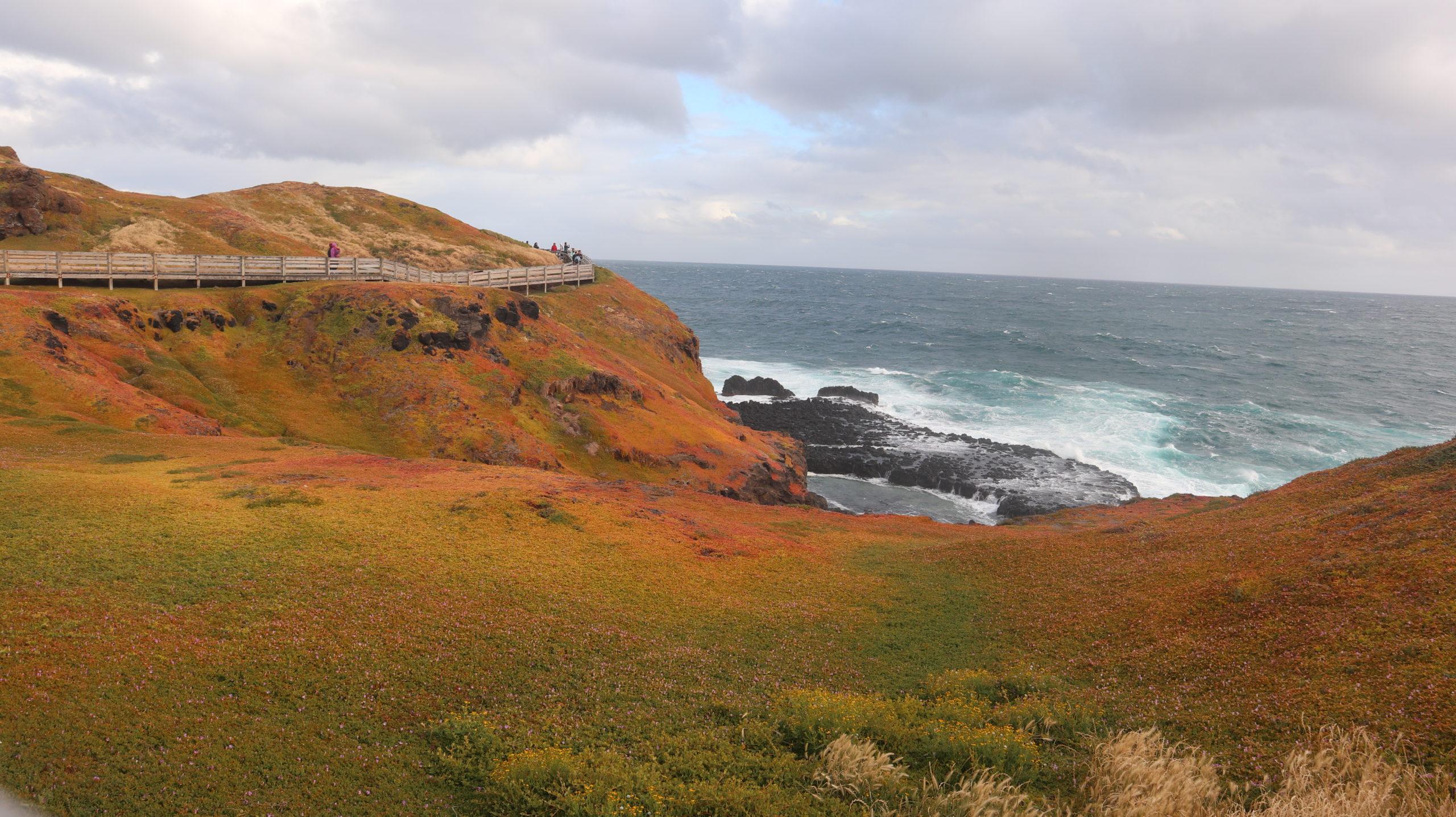 Phillip Island Landschaft