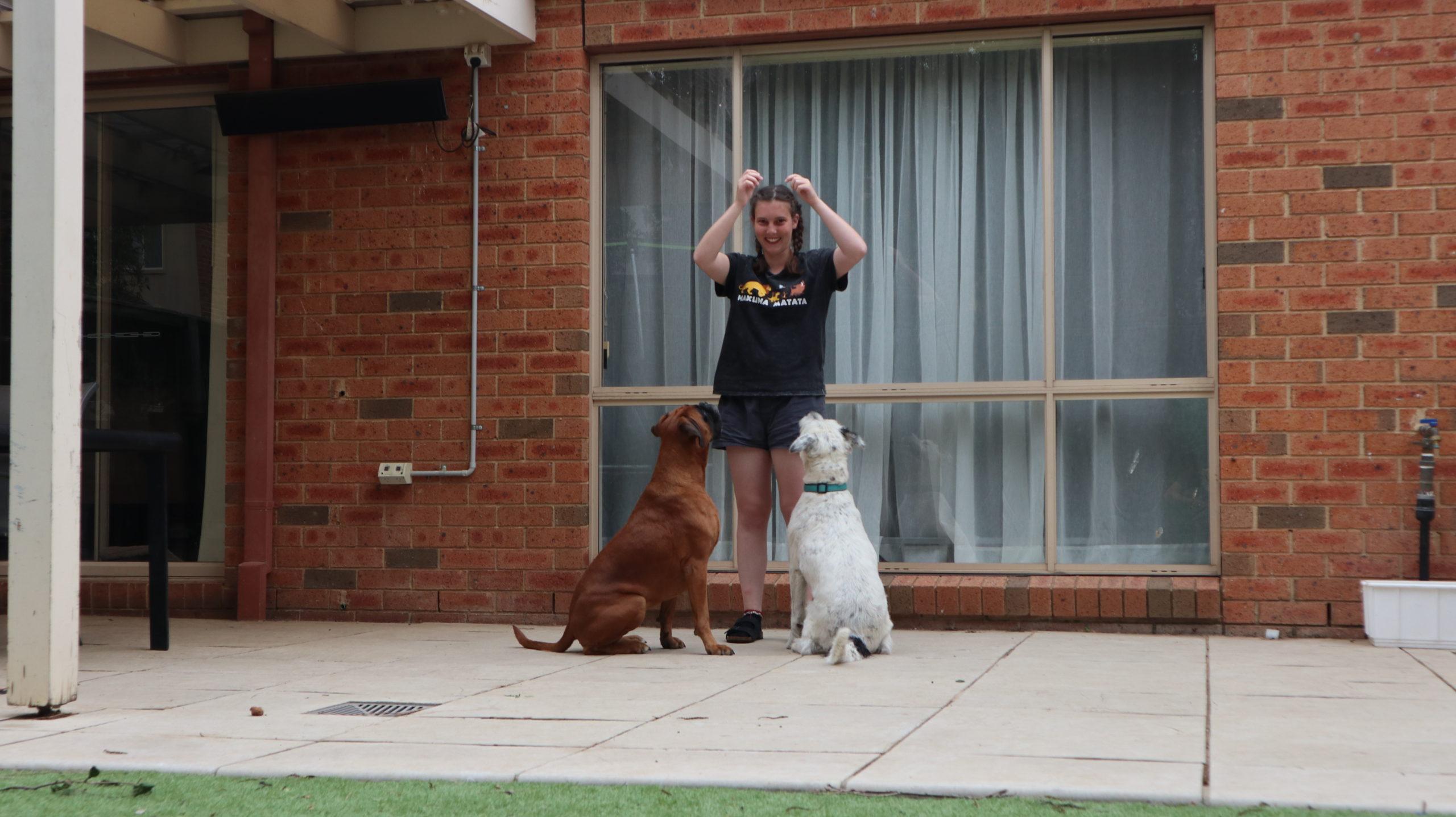 Housesitting Jenny mit Hunden