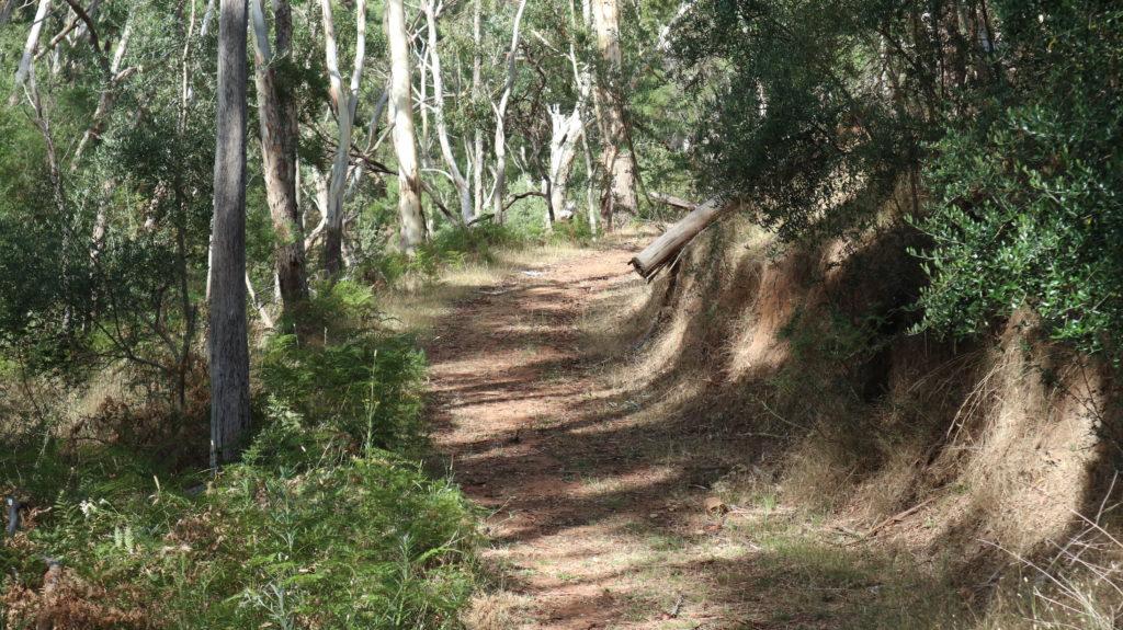 Montacute Conservation Park Wanderweg