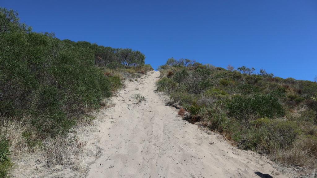 Dünenspaziergang Aufstieg