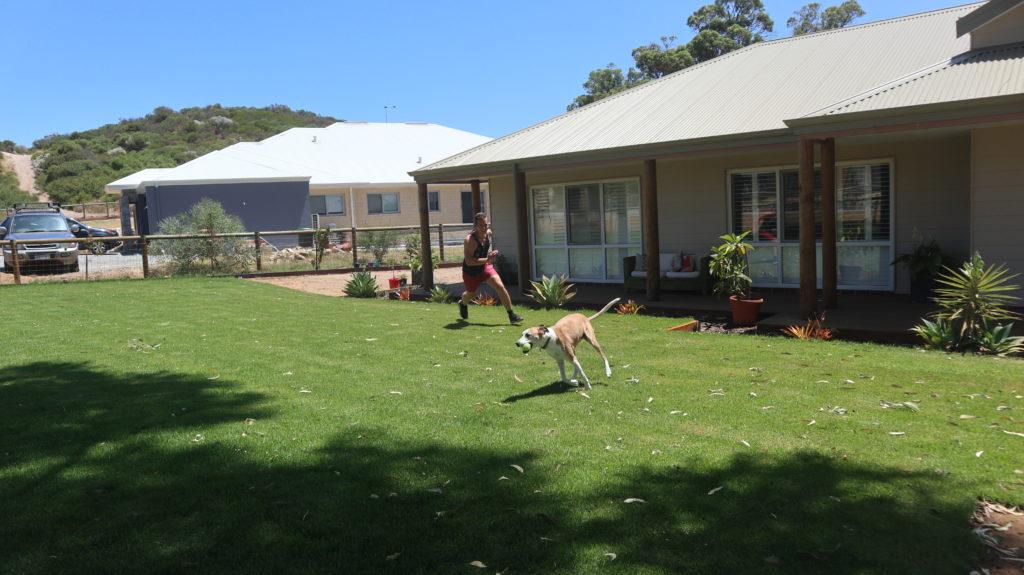 Daniel spielt mit dem Hund