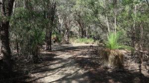 Yanchep Nationalpark: Wanderweg
