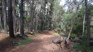 Serpentine Falls Wanderweg