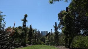 Botanischer Garten Melbourne