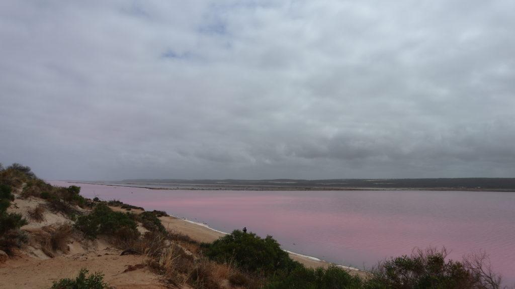 Pink Lake in der Nähe von Geraldton