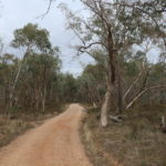 Warby-Ovens Nationalpark