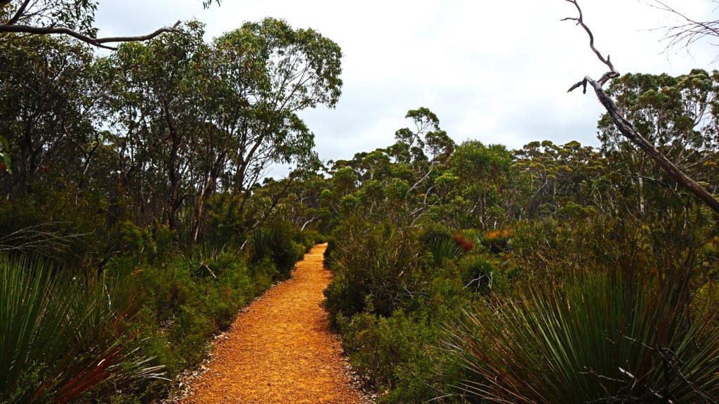 Nationalparks: Weg