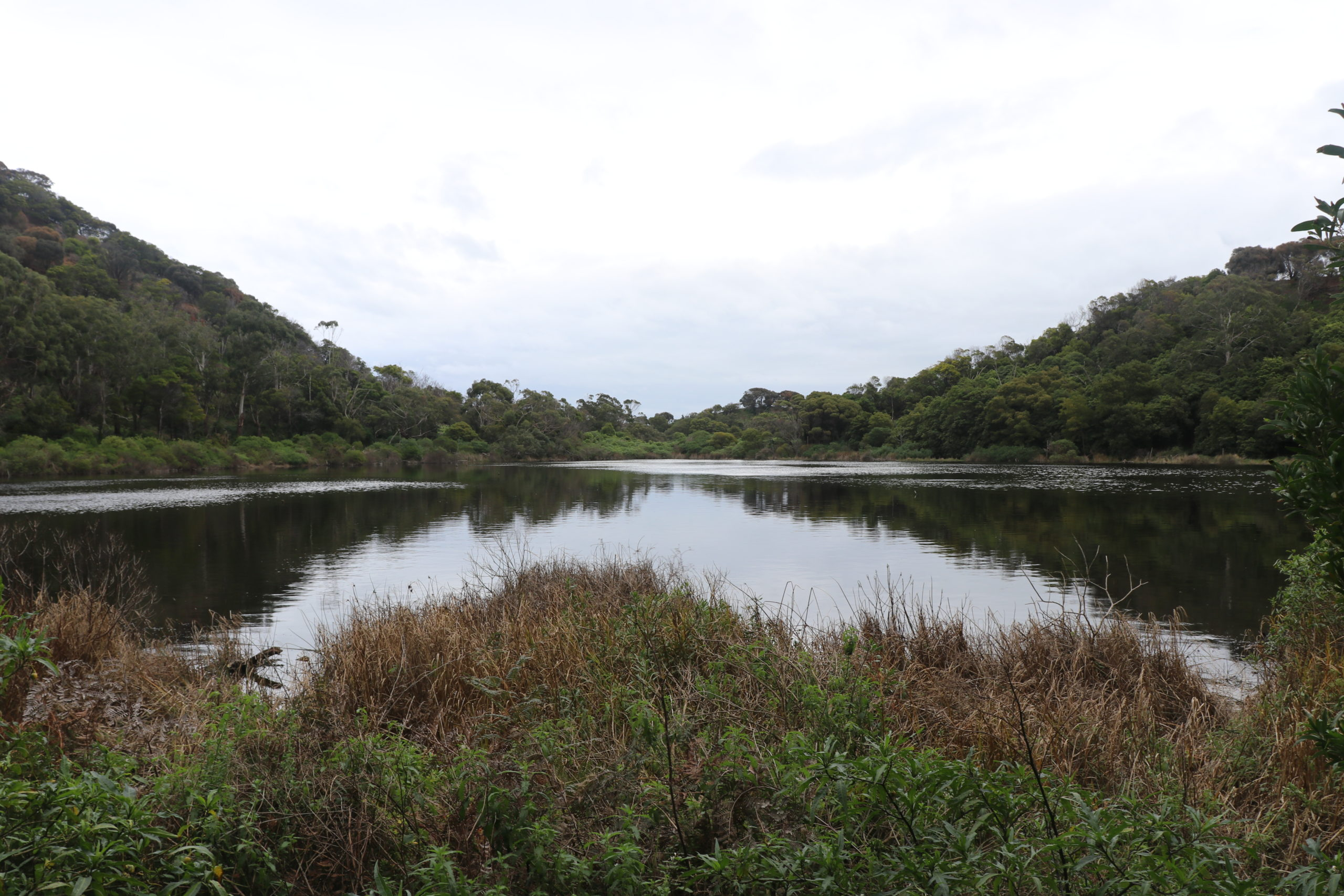 Tower Hill Wildlife Reserve: See