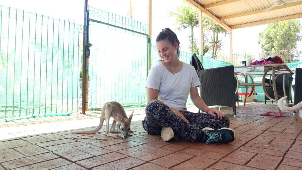 Kangaroo Retreat: Känguru und Jenny